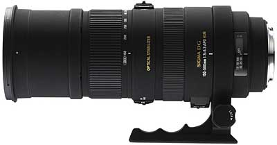 Sigma APO 150-500mm f/5-6.3 DG OS HSM review, for the price sensitive wilde life photographer.